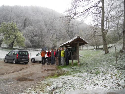 La nevada fora d'època barra el pas al Comanegra